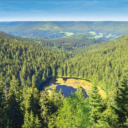 Urlaubsgutscheine für Ihren Wanderurlaub im Schwarzwald